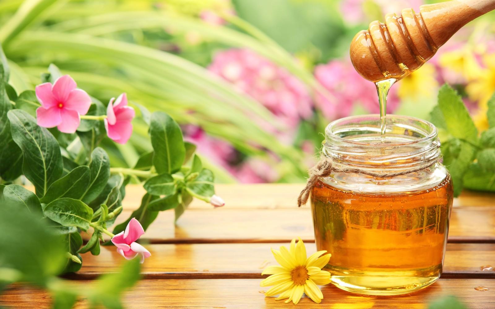 Il miele d'Abruzzo